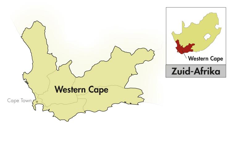 DeMorgenzon Stellenbosch DMZ Méthode Cap Classique Chenin Blanc Brut