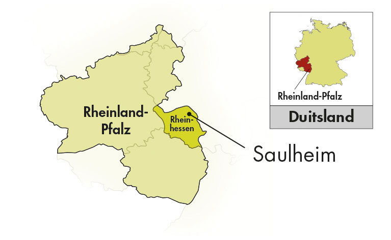 Weingut Thörle Rheinhessen Grauburgunder