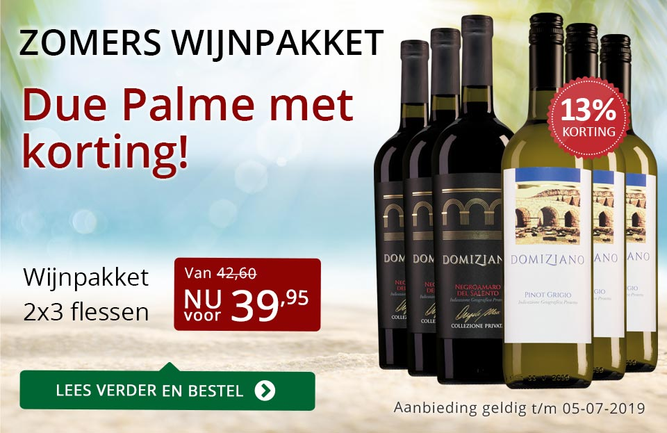 Zomers wijnpakket - Due Palme - rood