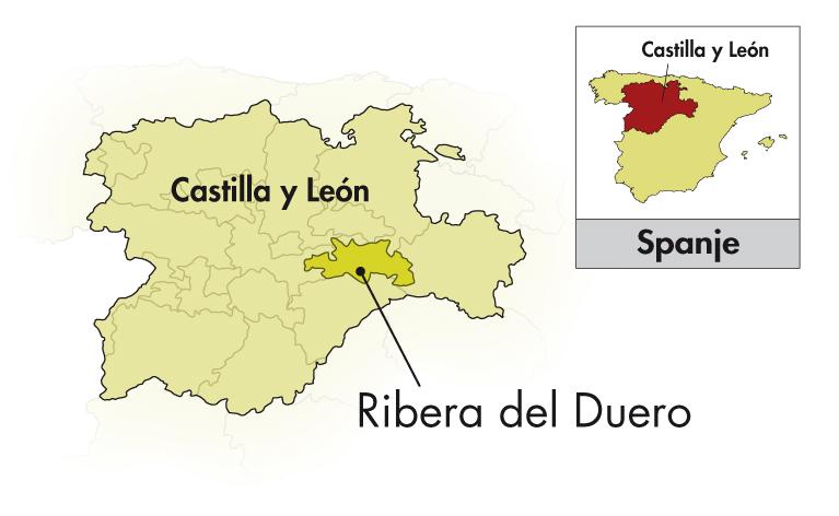 Bodegas Rodero Ribera del Duero Reserva