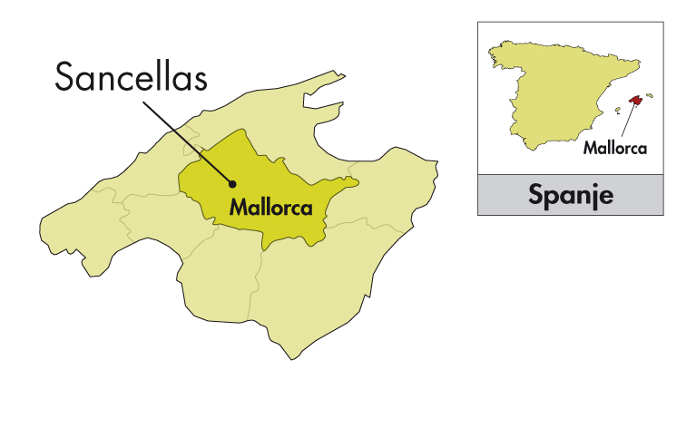 Son Prim Mallorca Merlot