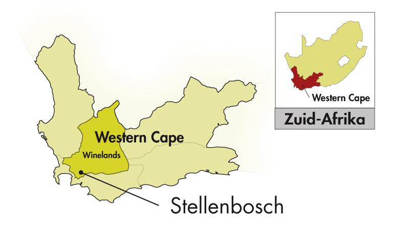 DeMorgenzon Stellenbosch DMZ Syrah
